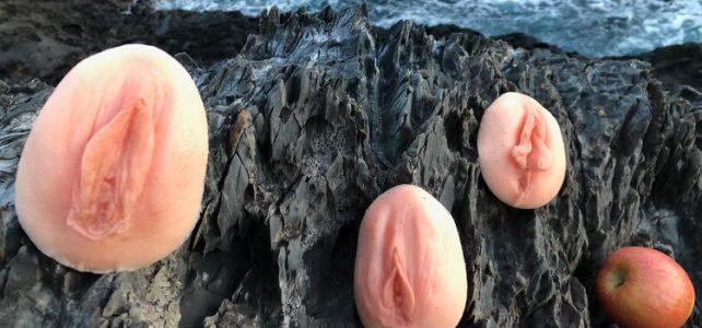 vagina vulva scheide vielfalt der namen